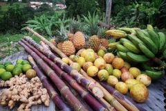 Fruits-de-Guadeloupe
