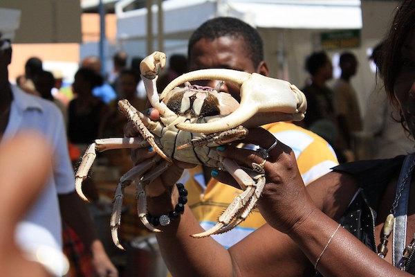 Crabe de terre Guadeloupe
