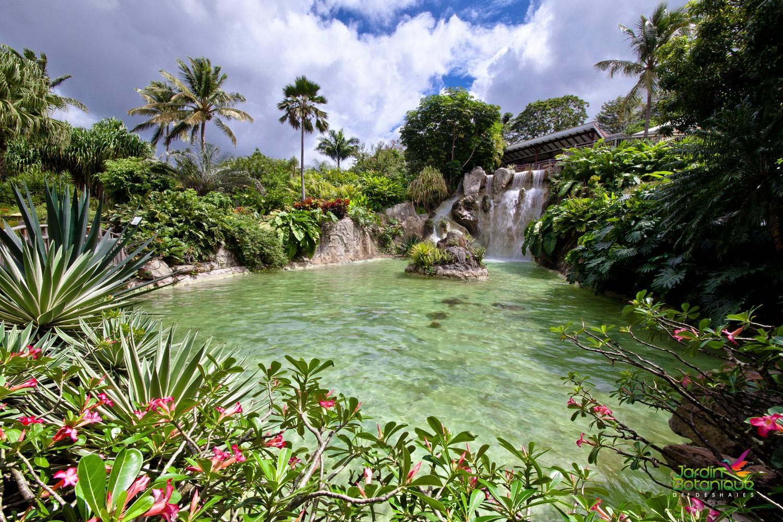 Cascade du Jardin Botanique de Deshaies en Guadeloupe