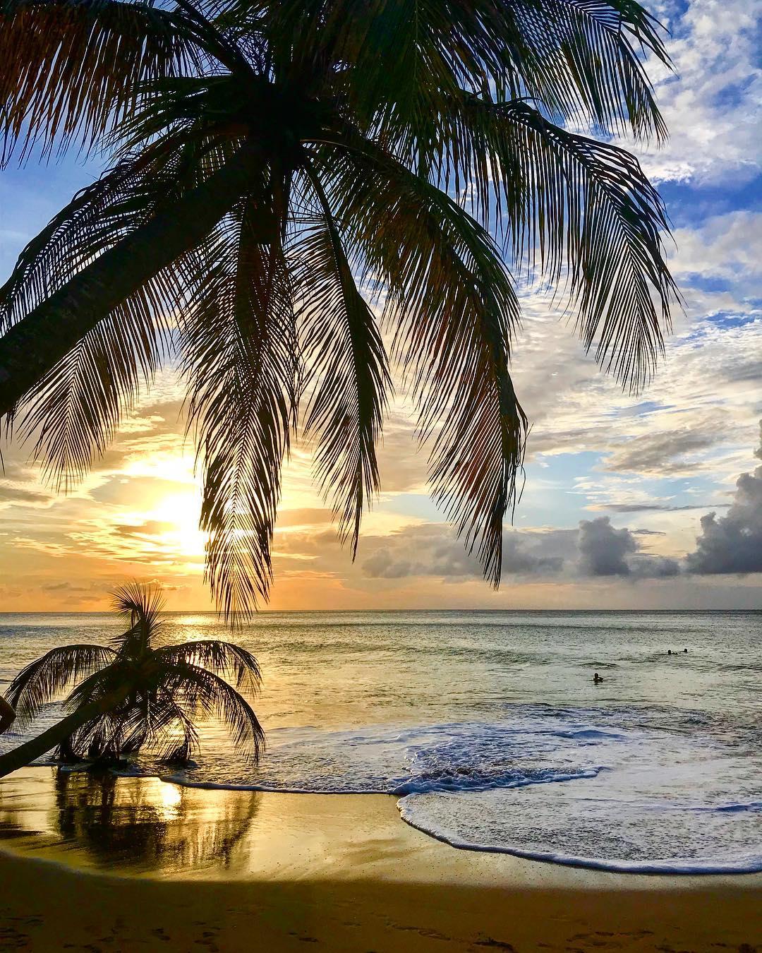 Les vacances de la Toussaint en Guadeloupe